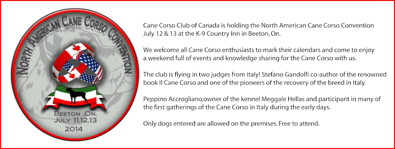 Cane Corso Club of Canada